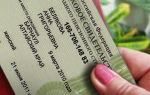 Что такое свидетельство государственного пенсионного страхования?
